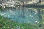 Baltzell Spring Vent, June 2003