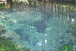 Looking down into Baltzell Spring, June 2003