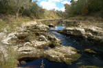 Hawthorn Group exposed in Suwannee River at White Springs