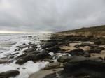 STATEMAP Fieldwork, Coastal Flagler County, Anastasia Formation (March 2014)
