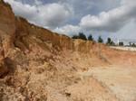 STATEMAP Fieldwork 2014, Orlando Quadrangle: Cenozoic Cypresshead Formation (2)