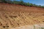 Miccosukee Formation at BASF Pit, 2014
