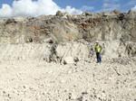 Ocala Limestone exposed in the Mazak Mine (Sumter County)