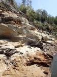 Alum Bluff Group Undifferentiated Carbonized Logs (Bristol Bluff, Apalachicola River)