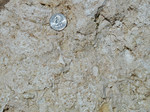 Closeup of Bridgeboro Limestone, Duncan Church Quarry, January 2000