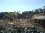 Landscape of Trawick Pit, January 2000