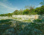 Coral wall from afar, Windley Key Quarry, 2007