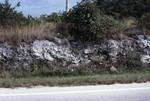 Road Cut At US And C-905 Key Largo