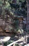 Rock Springs Exposure