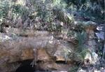 Rock Springs Cavity