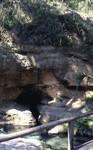 Rock Springs Cave