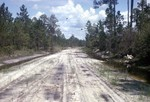 Jeff County Trail Exposures