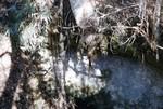 Chattahoochee Sinkhole