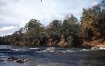 Chipola Riverside
