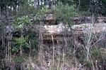 Jackson County Outcrop