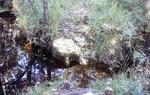 Rock Outcrop - Twin Sink
