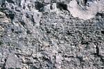 Anastasia Formation at Castillo de San Marcos