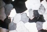 Sedimentary Thin Section