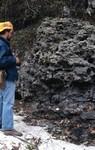 Suwannee Limestone Outcrop On Alapaha River