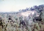 View of Bluff, East Side of Chattahoochee