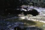 Cave in Suwannee Limestone