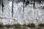 Key Largo Limestone on Windley Key