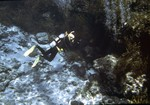 Ginnie Springs Diving