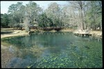Blue Hole Spring in Jackson County