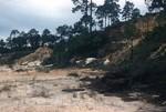 Citronelle At Red Bluff, Perdido Bay, AL