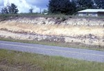 Road Cut, Citronelle Miocene Contact