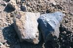 Suwannee Limestone at Rocky Creek