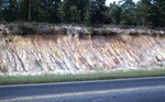 Citronelle formation in Jackson Co., Rt 90