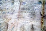 Color Banding Cutting Bedding, Citronelle Formation
