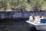 Coral Head ~560 Years to grow Key Largo Canal,Florida Geology Education Video
