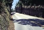Palm Beach Roadcut, Florida Geology Education Video Project