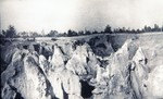 Ocala Limestone Pinnacles in Central Phosphate Company Pit