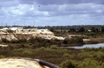 Cypresshead Formation, Sand Pit, Putnam Co.