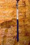 Coosawhatchie Formation Ebenezer Member Hawthorn Group Jessup GA