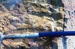 Cypresshead Formation, Jessup GA