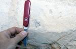 Burrows Cypresshead Grandin Sand Pit Putnam Co.