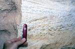 Cypresshead X-bedding Grandin Sand Pit Putnam Co.