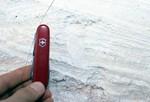 Burrows Cypresshead Formation Grandin Sand Pit Putnam Co.