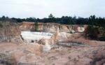 Cypresshead Grandin Sand Pit Putnam Co.