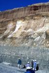 Mine Cut Floridin Company