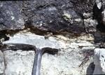 Suwannee/Ocala Limestone Contact
