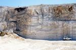 Limestone at Carroll Pit, Citrus Co.