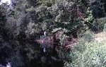 Outcrop Gulf Hammock Fm (Avon Park), On Waccasassa River